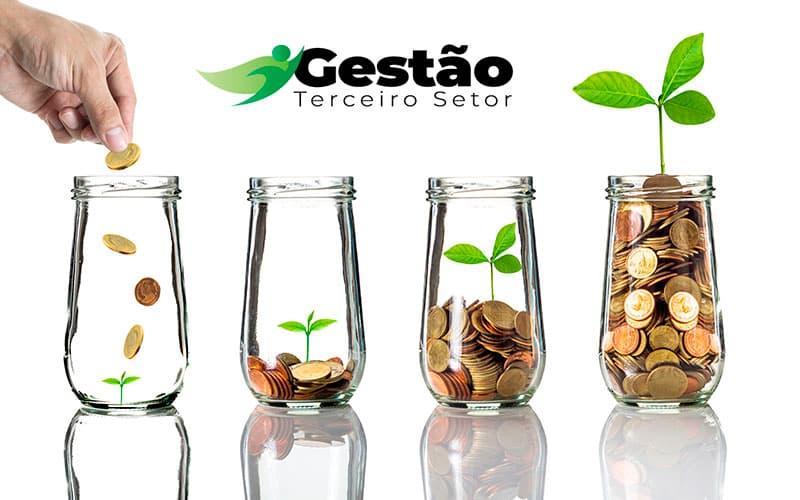 Vamos Te Ajudar A Criar Um Plano De Captação De Recursos Para A Sua Ong - gestao terceiro setor
